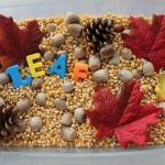 Leaf Sensory Bin
