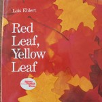 Red Leaf, Yellow Leaf Activity
