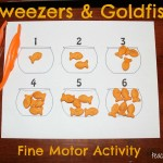 Tweezers and Goldfish Activity