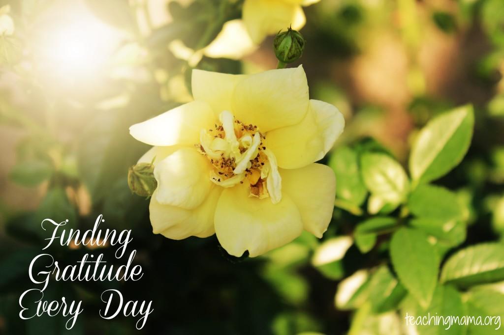 Finding Gratitude Every Day @ Teaching Mama #gratitudeeveryday