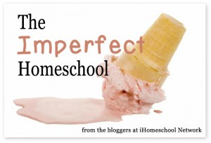 I'm an Imperfect Mom…