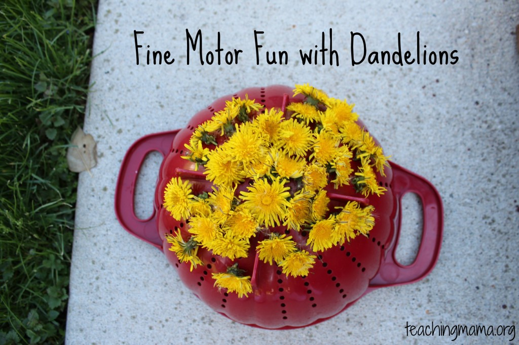 Fine Motor Fun with Dandelions