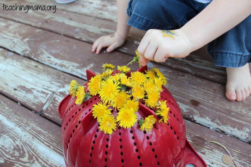 Dandelion Activity- good for building fine motor skills!