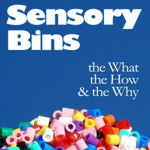 All You Need to Know About Sensory Bins