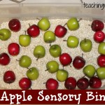 Apple Sensory Bin {With Free Printable}