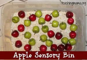 Apple Sensory Bin {With Free Printable}