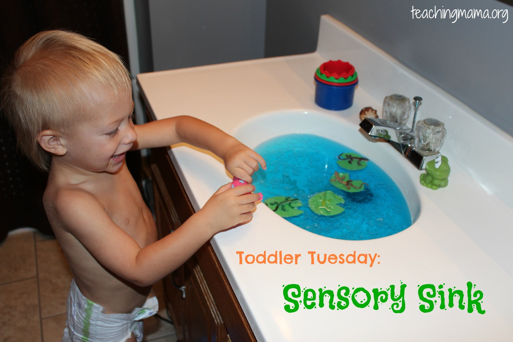 sensory sink