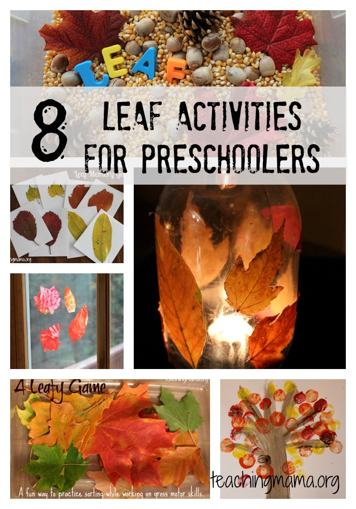 8 Leaf Activities for Preschoolers