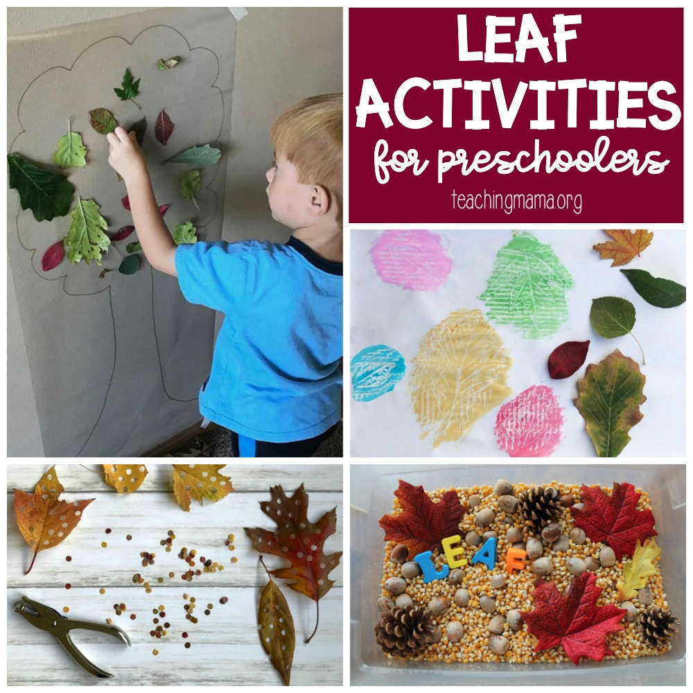leaf activities for preschoolers