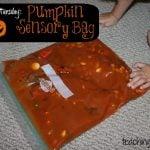 Toddler Tuesday: Pumpkin Sensory Bag