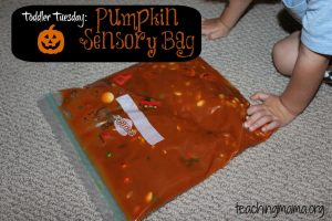sensory bag with pumpkins