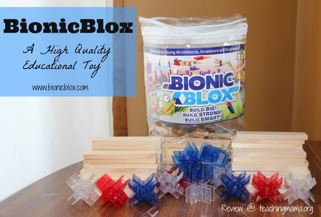 BionicBlox -- A High Quality Educational Toy