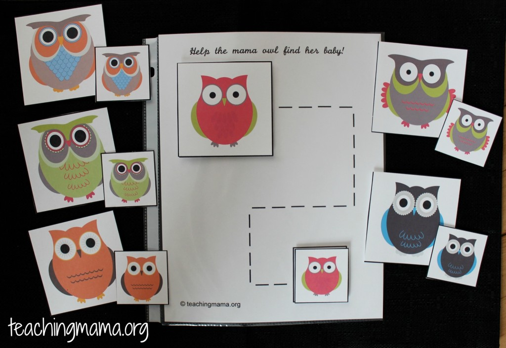 Owl Activity for Busy Bags