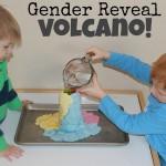Gender Reveal Volcano!!