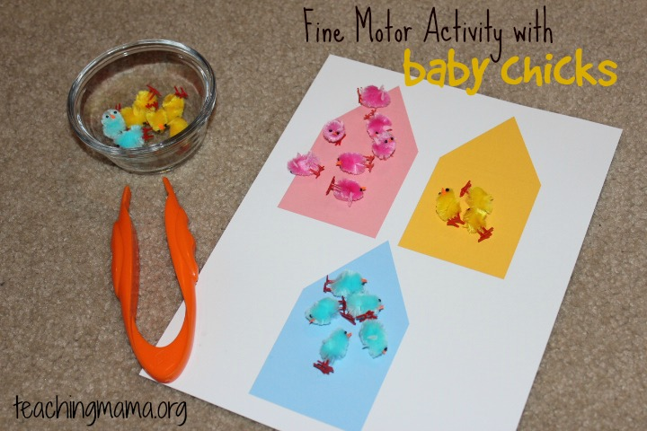 Fine Motor Activity with Baby Chicks