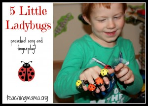 Little Ladybugs Song X on 8 songs to begin a preschool day