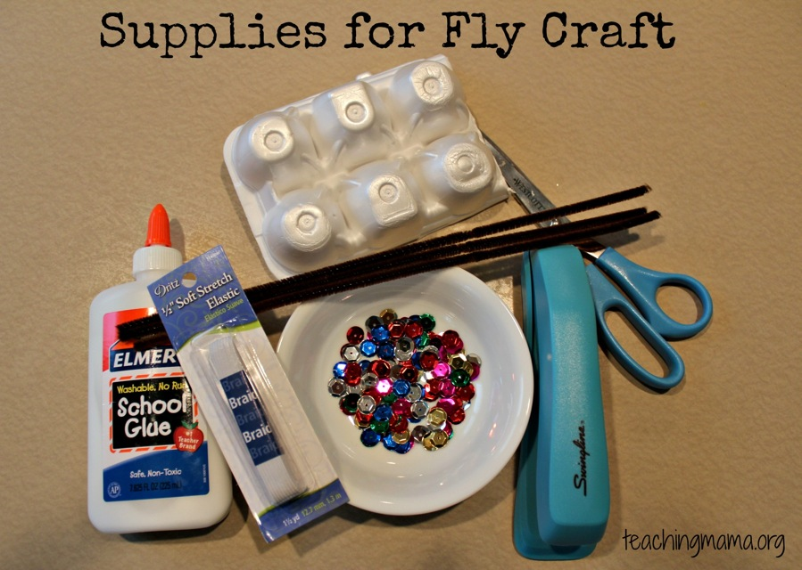 Supplies for Fly Craft