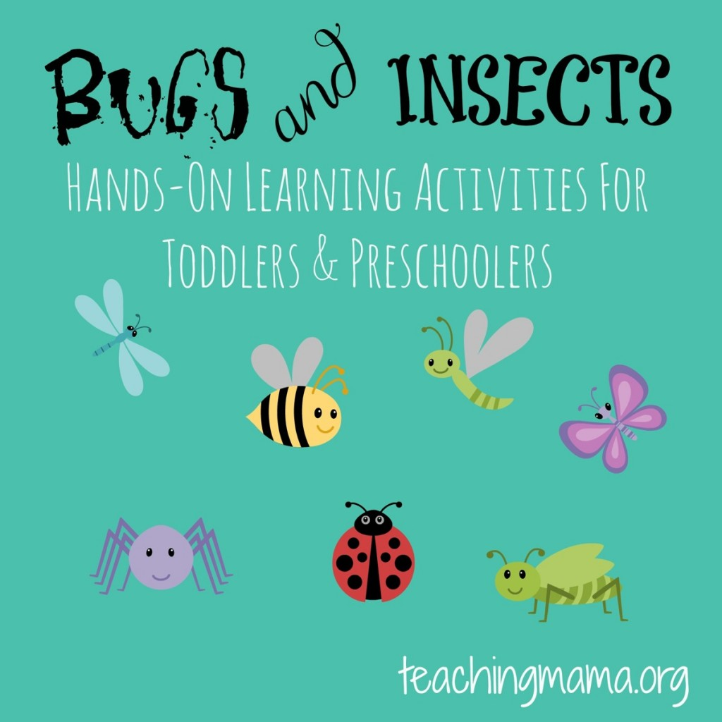 Bugs & Insects -- Hands on learning activities for toddlers and preschoolers