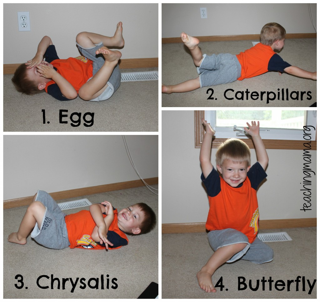 Egg to Butterfly Movement Activity