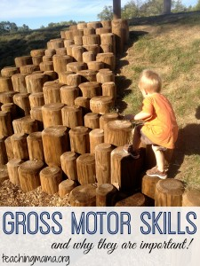 Gross Motor Skills {and why they are important!}
