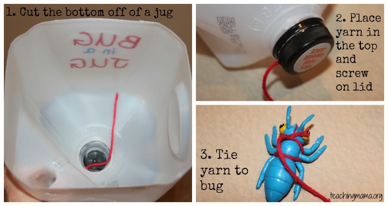Steps to make a Bug in the Jug