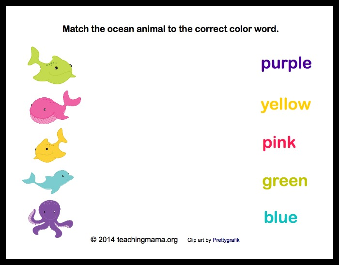 O is for Ocean Animals
