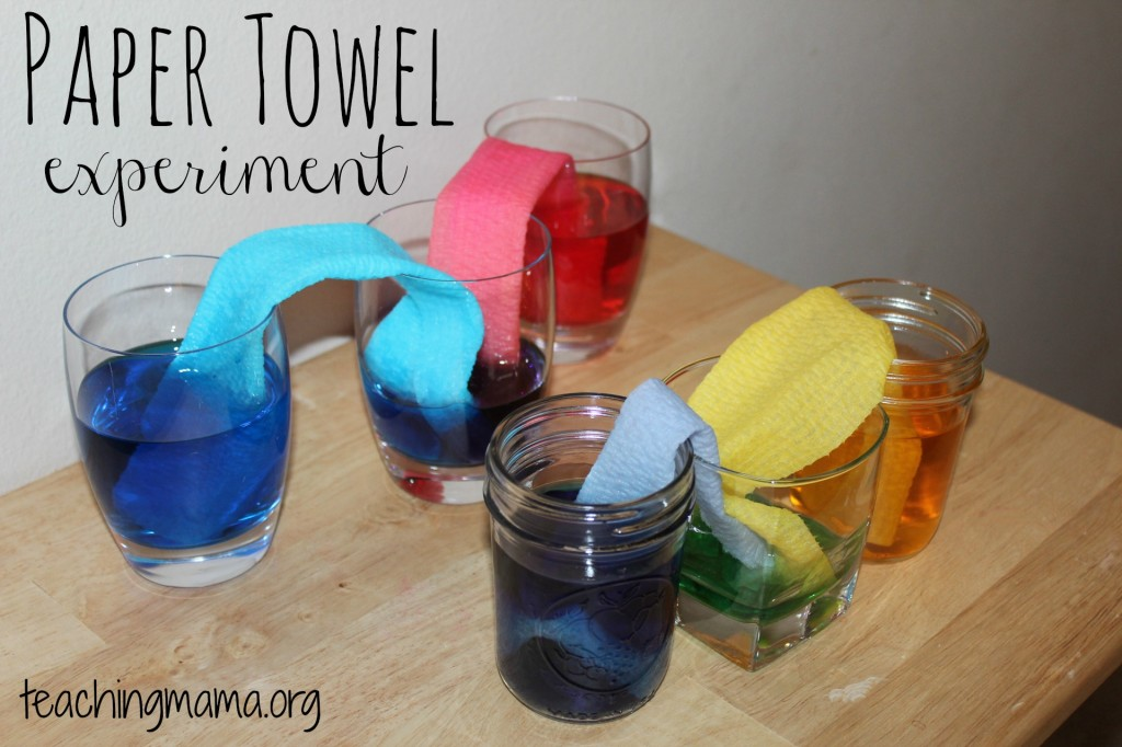 Paper Towel Experiments for Kids
