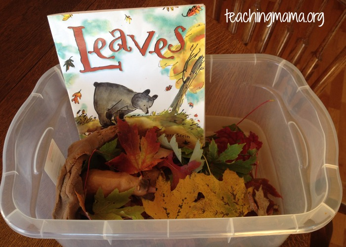 Sensory Bin for Leaves