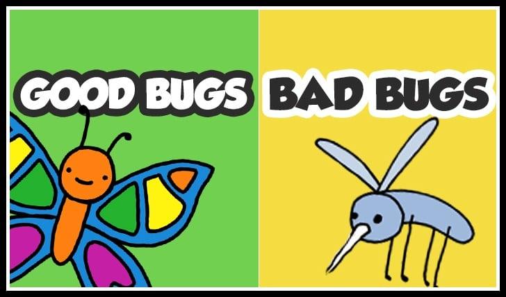 Good Bugs, Bad Bugs