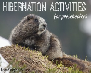 Hibernation Activities for Preschoolers