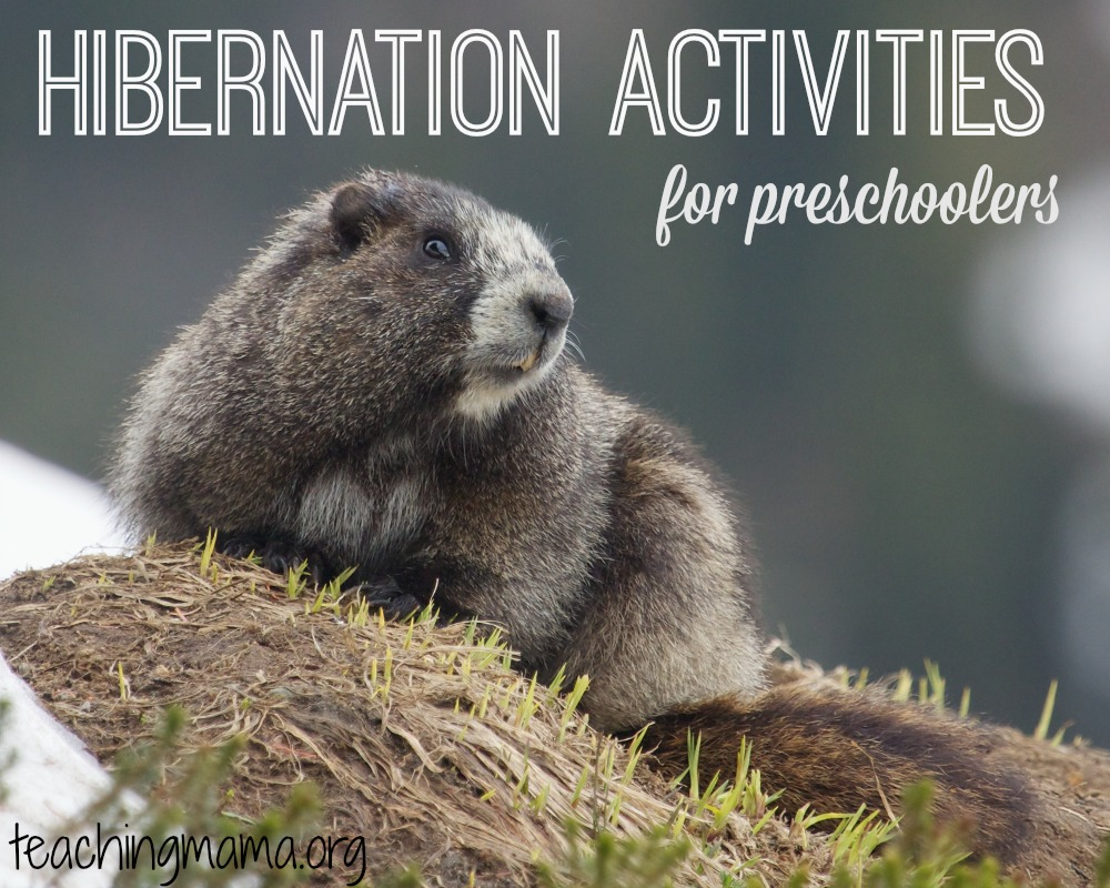Hibernation Activities for Preschoolers - Teaching Mama