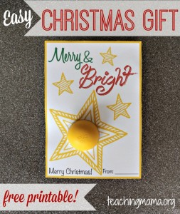 Merry & Bright Christmas Gift