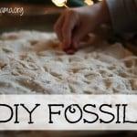 DIY Fossils