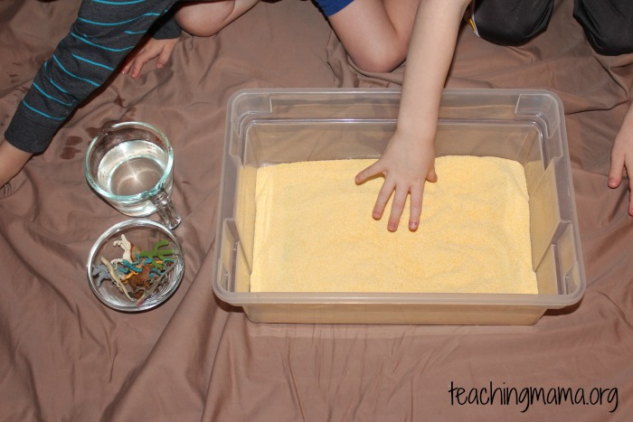 invitation to play with cornmeal