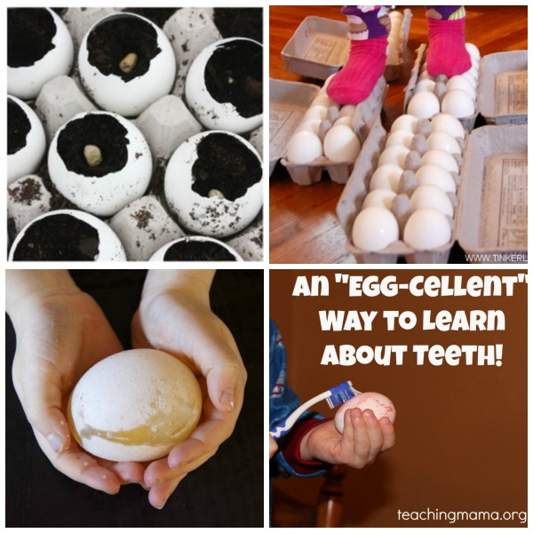 Egg Collage 2