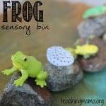 Frog Life Cycle Sensory Bin