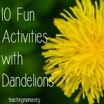 10 Fun Activities with Dandelions