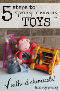 5 Steps to Spring Cleaning Toys