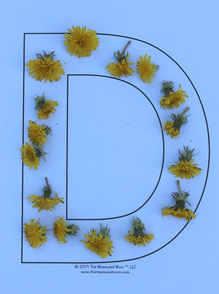 D is for Dandelion
