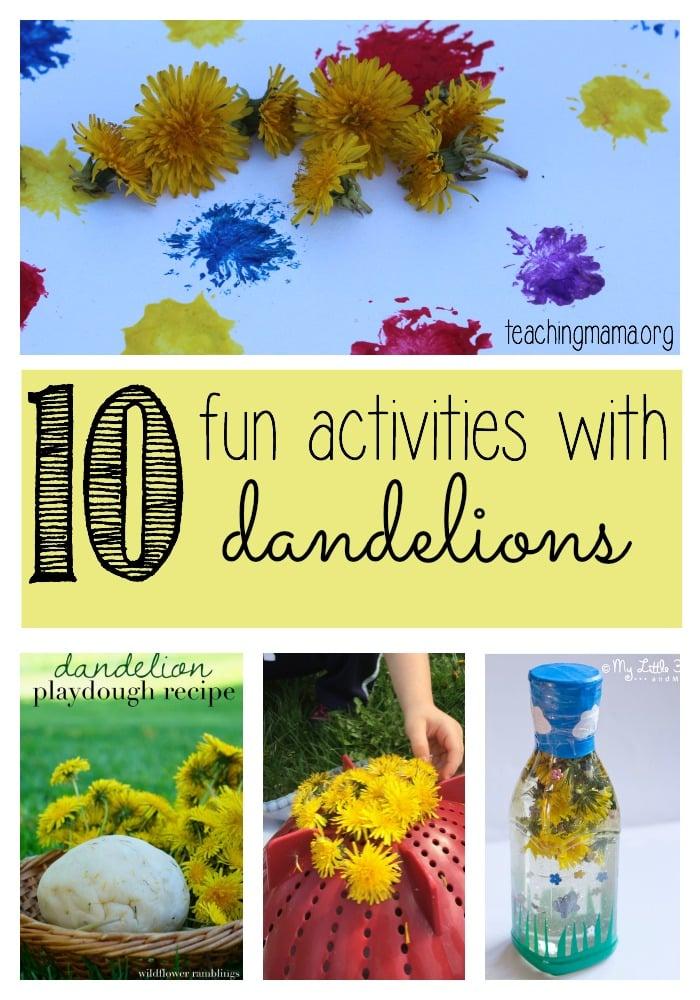 Dandelions Pinterest