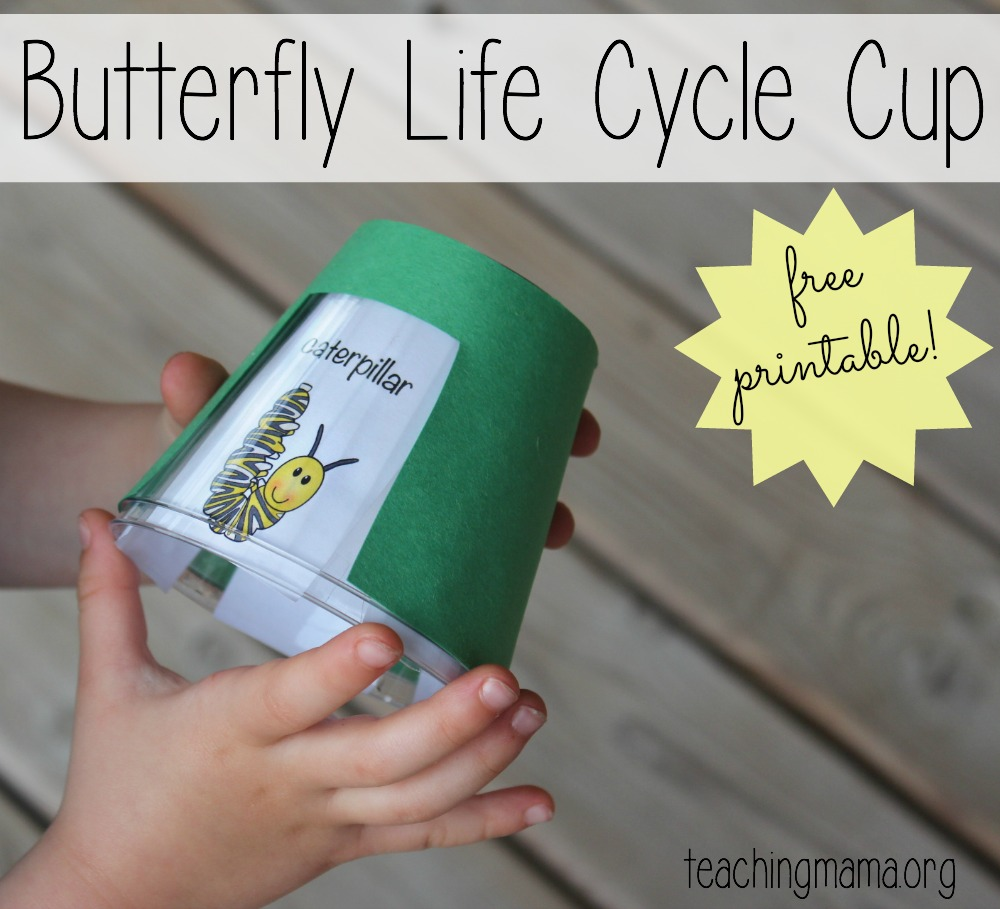 Butterfly Life Cycle Cup- with FREE printable!