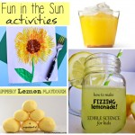 Fun in the Sun Picnic Ideas