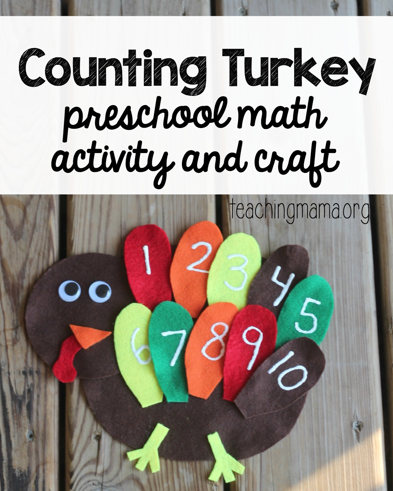 Counting Turkey Main