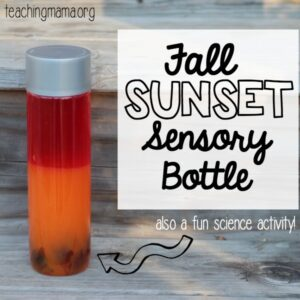 Fall Sunset Sensory Bottle