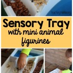 Sensory Tray for Mini Animal Figurines