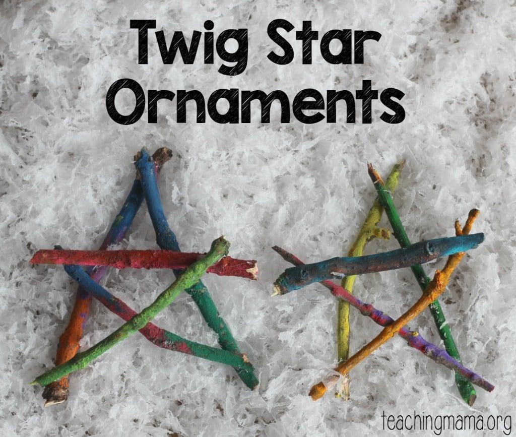 Twig Star on Snow