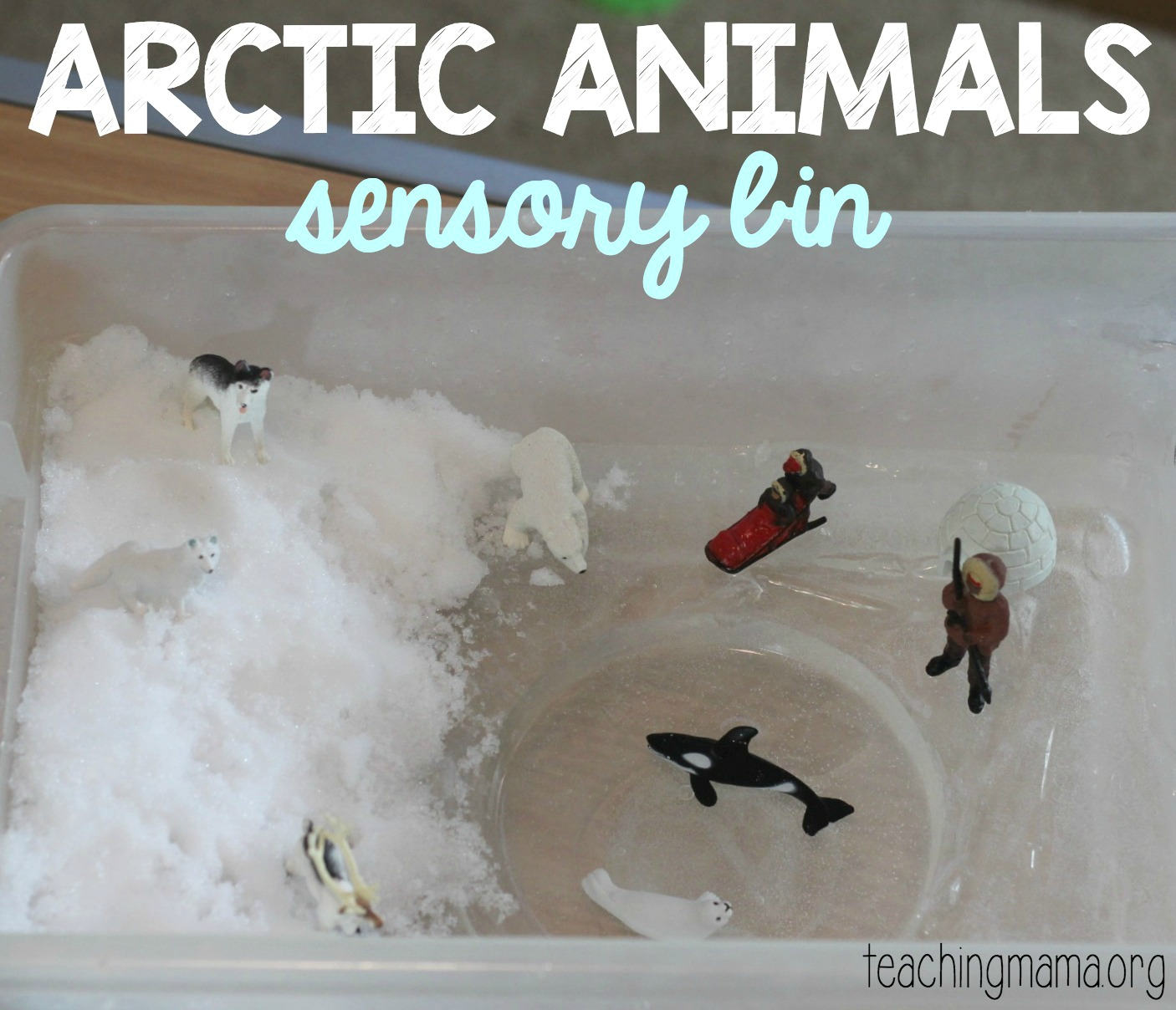 Arctic Animals Sensory Bin Teaching Mama