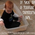 If You Give a Toddler a Sensory Bin…