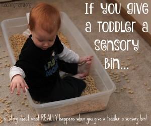 If You Give a Toddler a Sensory Bin…