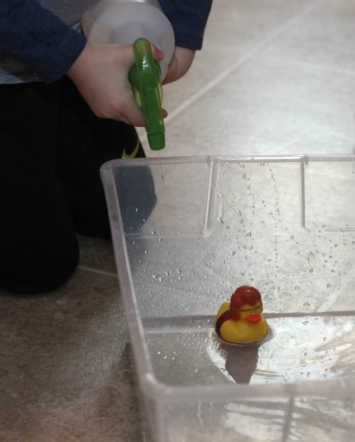 spray bottle duck